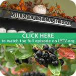 FULL EPISODE #201: Milkhouse Candles & Aronia Berry Services of Northeast Iowa
